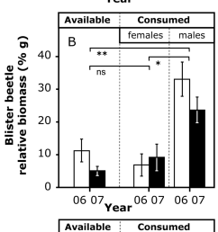 blister beetle relative abundance a and biomass b in relation to download scientific diagram [ 850 x 2472 Pixel ]