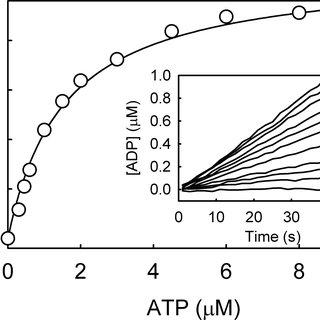 (PDF) A Biosensor for Fluorescent Determination of ADP