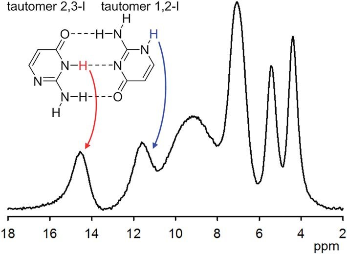 1 H NMR spectrum of solid isocytosine acquired at 65 kHz