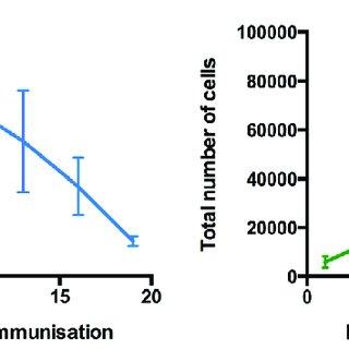 Extrafollicular Foxp3 + regulatory T cells control the