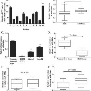 (PDF) MicroRNA-146a inhibits cancer metastasis by