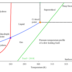 Co2 Pressure Temperature Phase Diagram Us Government Checks And Balances Of Pure Is Shown Here Liquid Gas Phases Will Coexist If The Lies On Saturation Line As By Blue
