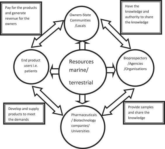 Inter-linkages between the stakeholders of marine
