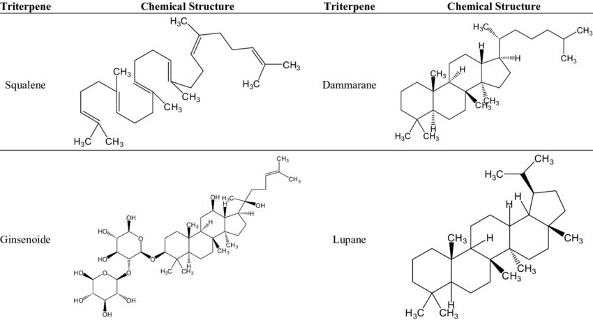 Examples of triterpenes presenting cytotoxic activity