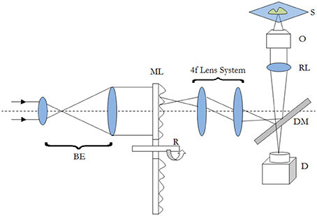 Schematic diagram of a typical MMM imaging system. The