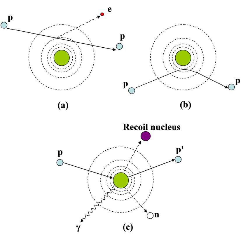 Schematic illustration of proton interaction mechanisms