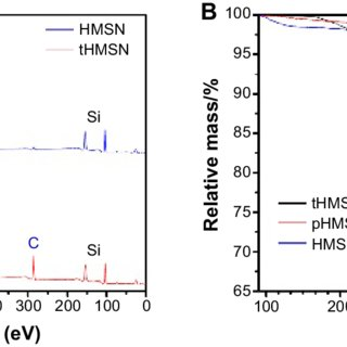 Transmission electron micrographs of (A) ssN and (B) hMsN