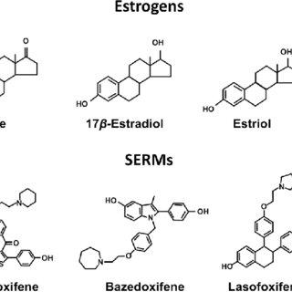 Molecular activity of selective estrogen receptor