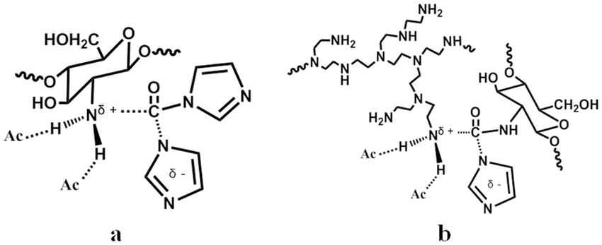 onic liquid anions hydrogen-bonding with ammonium ions in