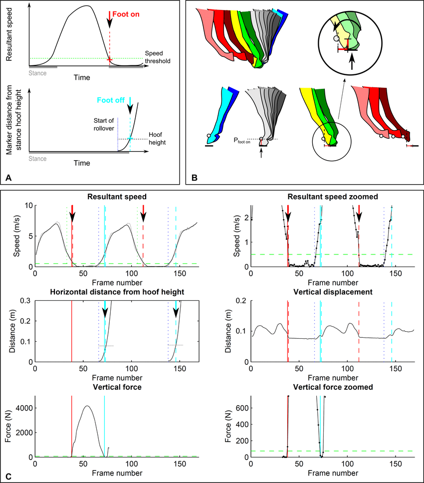 hight resolution of threshold based footfall detection method a principle for foot on top