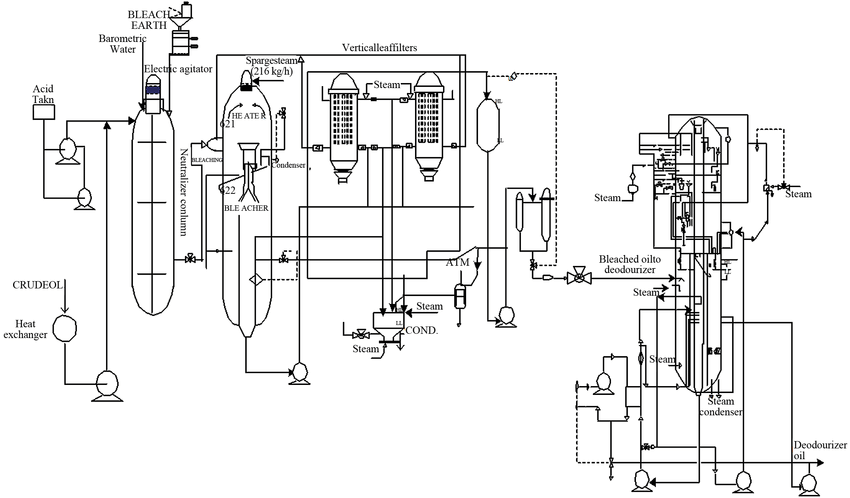 Schematic diagram of the production of edible vegetable
