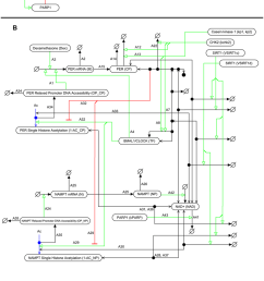 molecular interaction map mim wiring diagram of the simulated system a a [ 850 x 1354 Pixel ]