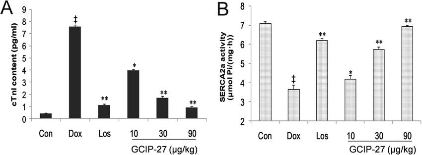 The effects of the GCIP-27 on serum cardiac troponin-I