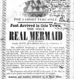notice of the exhibition of a real mermaid letterpress with a manuscript [ 850 x 1118 Pixel ]