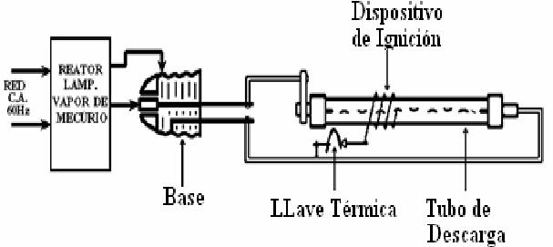 Estructura interna de la lámpara HPS con el ignitor