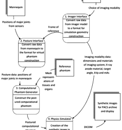 data flow diagram of the proposed interactive simulation system the reference phantom is generated only [ 850 x 1141 Pixel ]