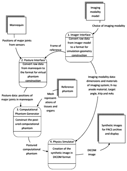 small resolution of data flow diagram of the proposed interactive simulation system the reference phantom is generated only