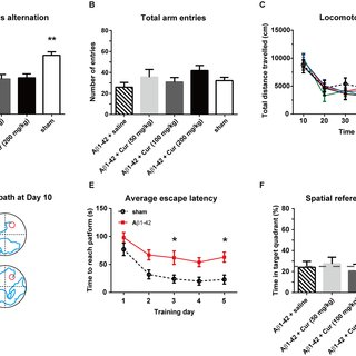 (PDF) Curcumin Improves Amyloid β-Peptide (1-42) Induced