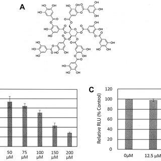 (PDF) Tannic Acid Inhibits Hepatitis C Virus Entry into