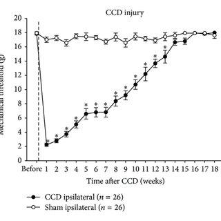 (PDF) Modulation of Spinal GABAergic Inhibition and