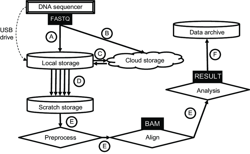 High-throughput DNA sequence data flows across multiple