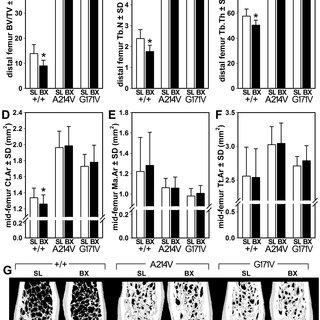 (PDF) Missense Mutations in LRP5 Associated with High Bone