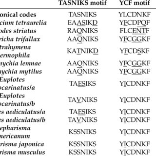 (PDF) Non-Standard Genetic Codes Define New Concepts for