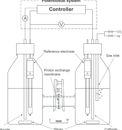 schematic diagram of the microbial fuel cell setup with the photosynthetic biocathodic chamber on the right [ 850 x 927 Pixel ]