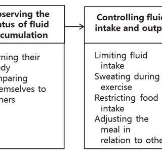(PDF) [The Experience of Fluid Management in Hemodialysis