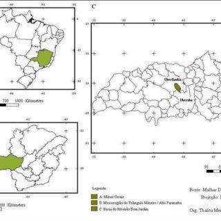 (PDF) IMPACTOS DA CONVERSÃO DE USO E MANEJO DO SOLO DO