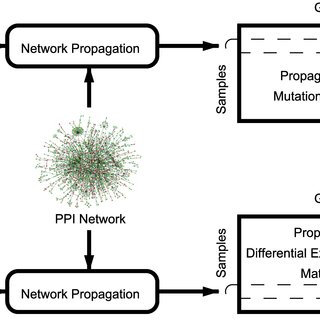 (PDF) Network-Based Integration of Disparate Omic Data To