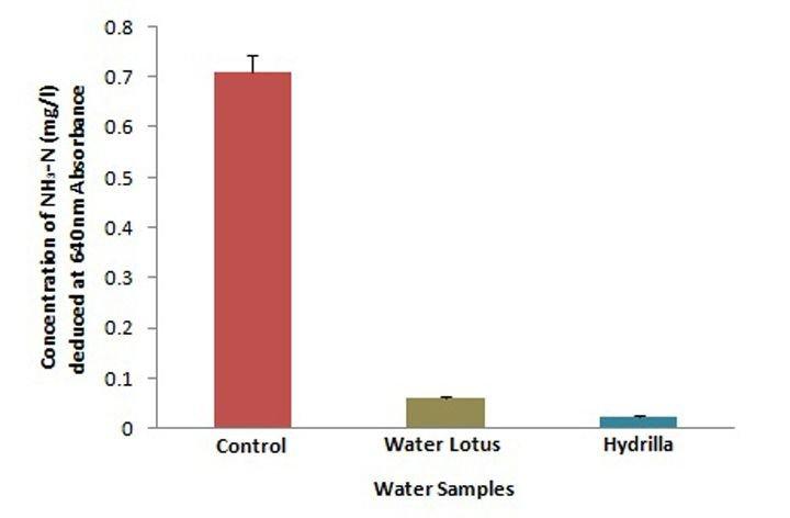 lotus in water plant diagram volvo penta 5 7 alternator wiring ammonia nitrogen assay of untreated control and aquatic plants