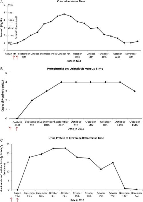 small resolution of trends of serum creatinine urinalysis proteinuria albuminuria and urine protein to creatinine