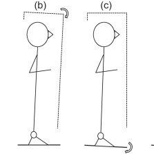 (PDF) Human upright posture control models based on
