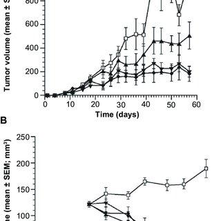 Summary of findings from MCF-7 murine tumor xenograft