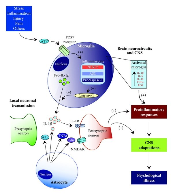 Bidirectional relationship between systemic illness and ...