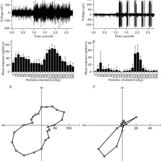 Record of body temperature (A), heart rate (B), femoral