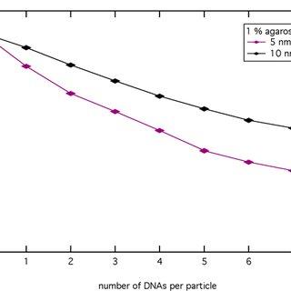 IUpaC nucleotide codes for representation of degenerate