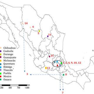 (PDF) Unlocking the genetic diversity of Creole wheats