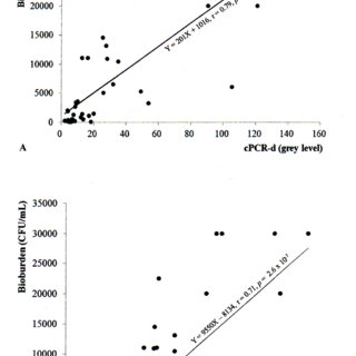 (PDF) PCR analysis for assessment of bacterial bioburden