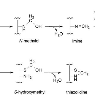 Mechanisms of formaldehyde toxicity. (A) The reaction of