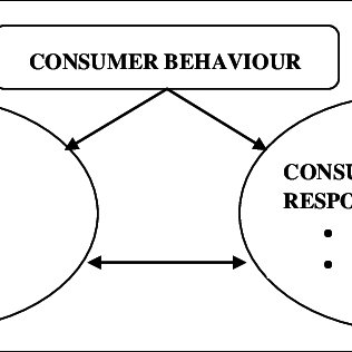 (PDF) Visual Merchandising Displays Effect On Consumers: A