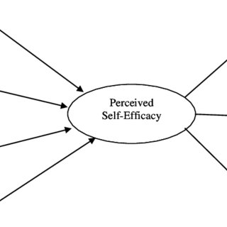 Model of Behavioral Consequences and the Outputs