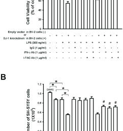 dj 1 knockdown in bv 2 microglia cells enhances lps induced death of download scientific diagram [ 835 x 1445 Pixel ]