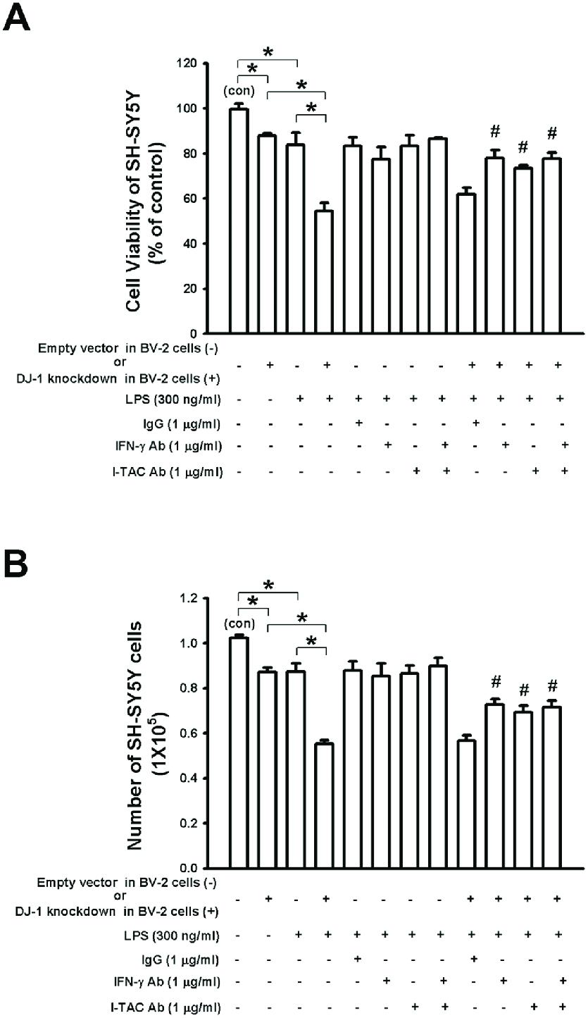 medium resolution of dj 1 knockdown in bv 2 microglia cells enhances lps induced death of download scientific diagram