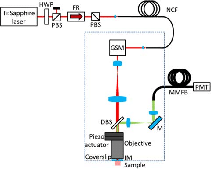 a diagram of microscope parts online ups block schematic the custom built fibre coupled multiphoton used to acquire autofluorescence images from ex vivo samples mouse