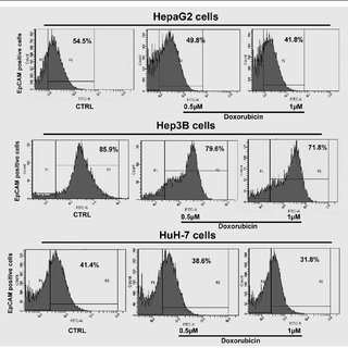 EpCAM protein expression level was decreased by