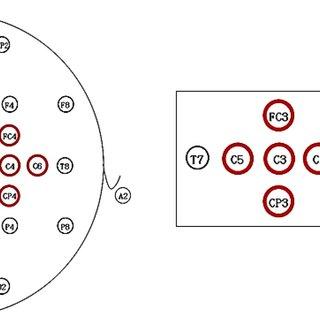 (PDF) Effective Motor Evoked Potential Waveforms in