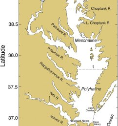 chesapeake bay showing major rivers cities salinity zones and sampling stations for pigments [ 850 x 1464 Pixel ]