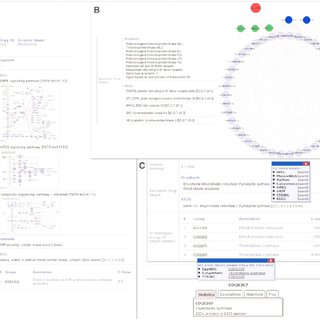 (PDF) The drug-minded protein interaction database